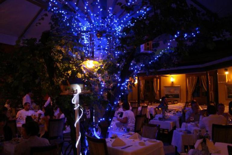 Trilye Restaurant, Ankara