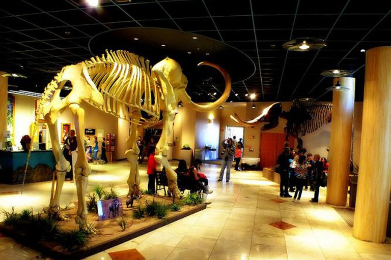 Arizona Museum of Natural History, Mesa