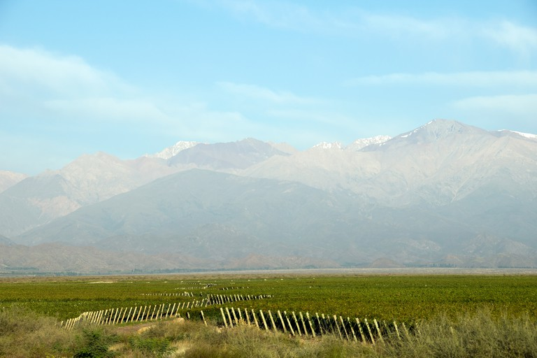 The view of the Andes from The Vines