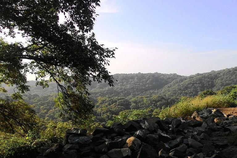 An aerial view of Sanjay Gandhi National Park in Mumbai