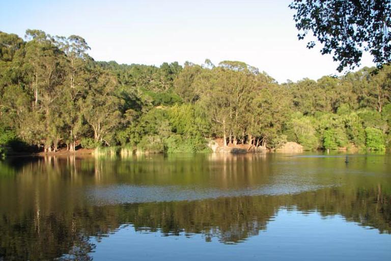Lake Anza in Tilden Park