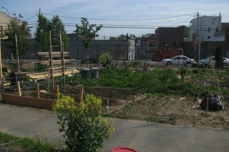 Two Coves Community Garden