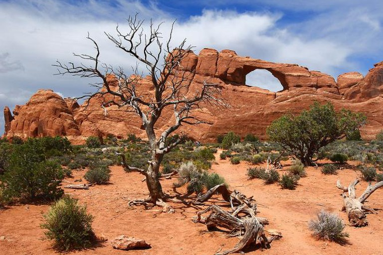 The Skyline Arch at Arches National Park