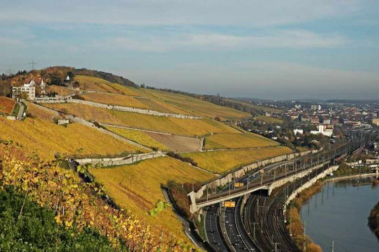 The view from Würzburg's Stein hill