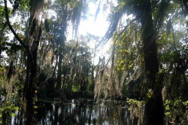 Lafitte National Park and Preserve