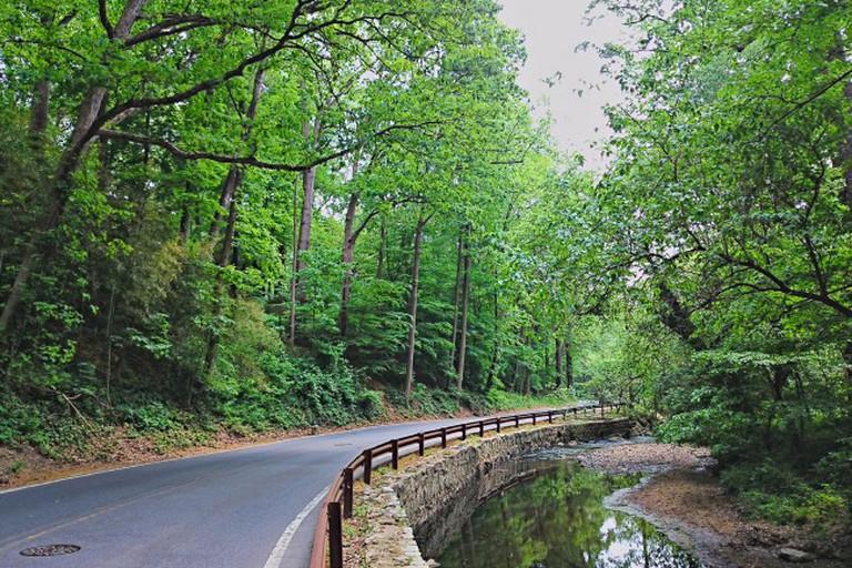 Sligo Creek Parkway, Takoma Park