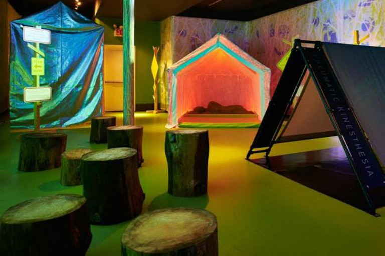 Installation View of 'Splendor in the Grass' by DROOG Studio, Museum of Sex, NYC