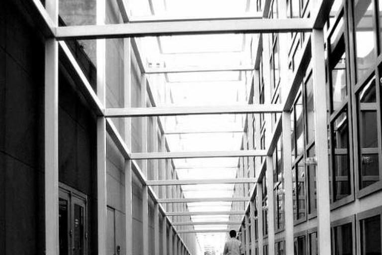 danowexner, Wexner Center for the Arts