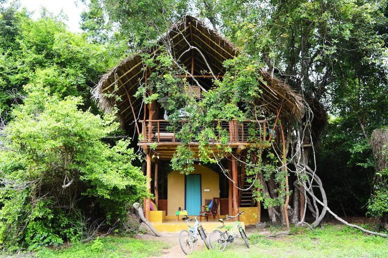Tree House at Dehigaha Ela