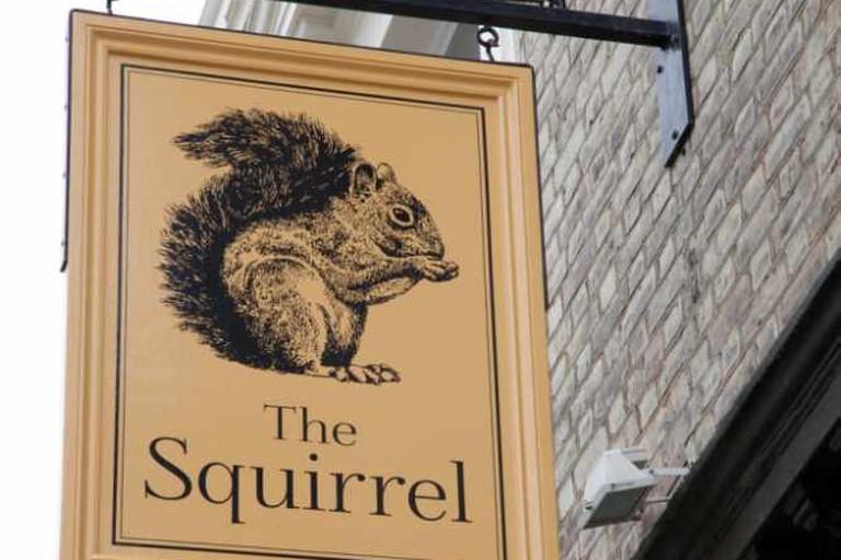 The Squirrel, Chippenham Road