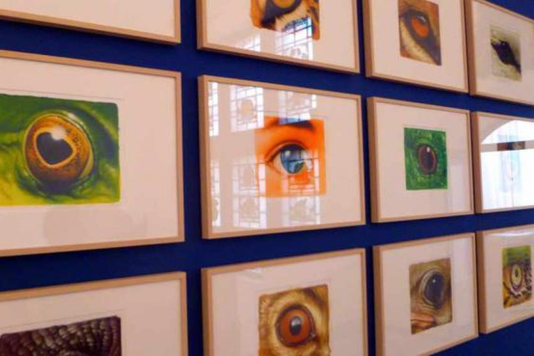 """Eyes"" by Dieter Weismuller at Altonaer Museum"