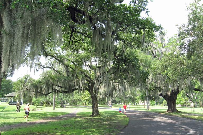 Audubon Park landscape