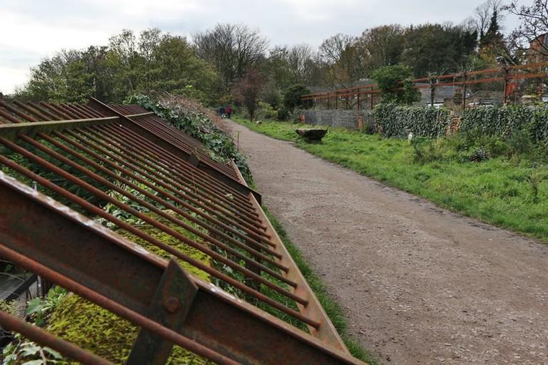 Railway Line Walk, Muswell Hill