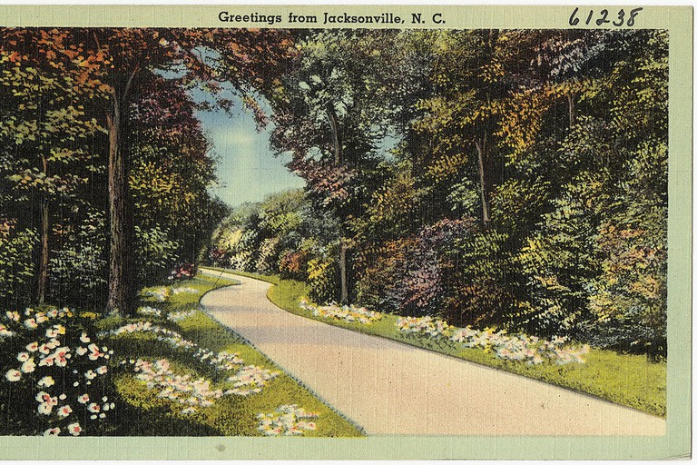 'Greetings from Jacksonville, NC' postcard