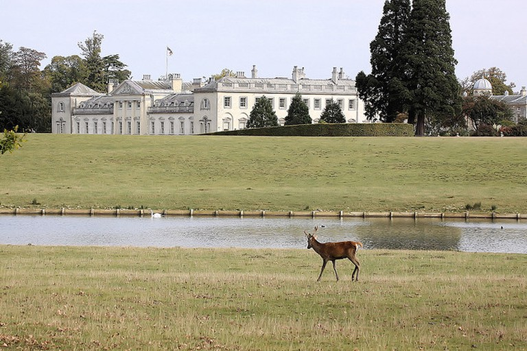 Woburn Abbey Deer Park