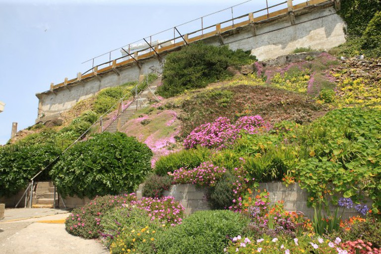 View of the gardens at Alcatraz