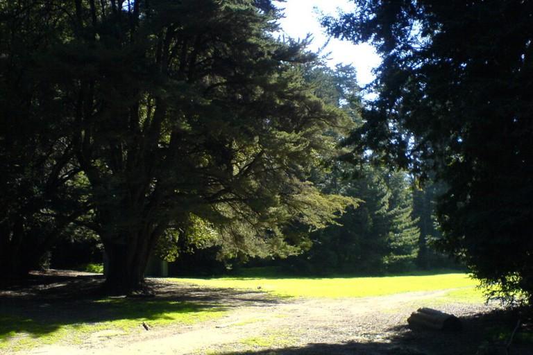 Joaquin Miller Park