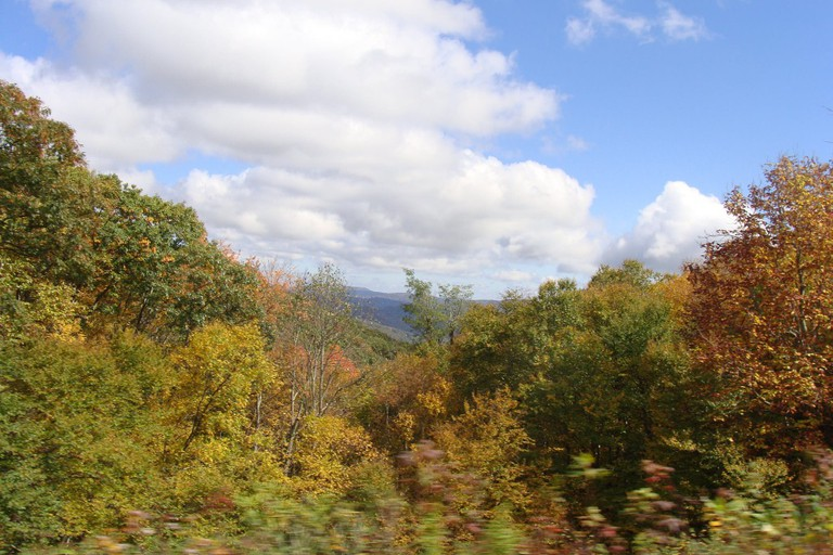 Roan Mountain State Park, Tennessee
