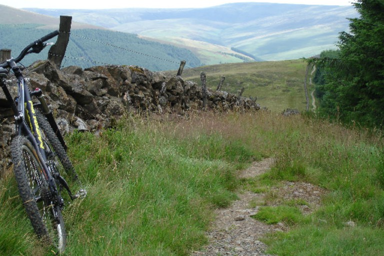 The Boundary Trail at Glentress