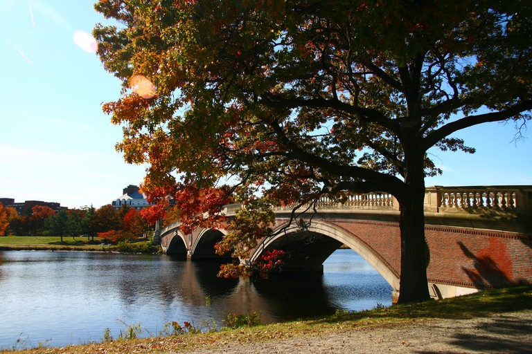 cambridge esplanade memorial drive boston running