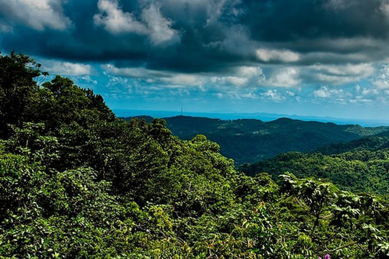 View the majesty of El Yunque