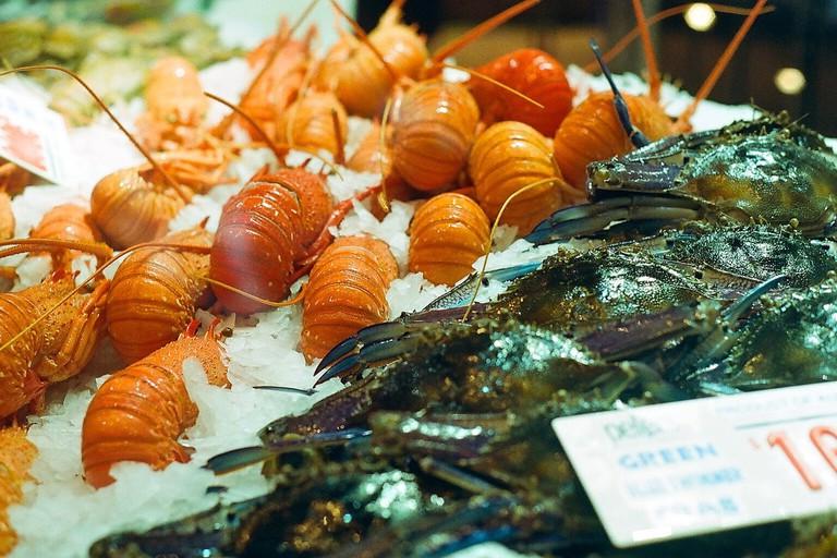 Australian lobster © Ellen Munro/Flickr