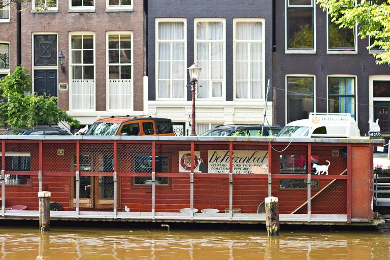 De Poezenboot, Amsterdam
