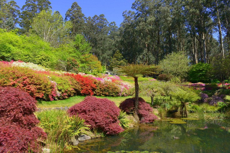 Dandenong Ranges Botanic Garden © Chris Phutully / Flickr