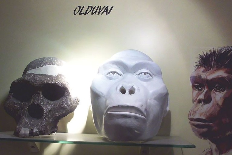 Hominid recreations at the Oldupai Gorge Museum