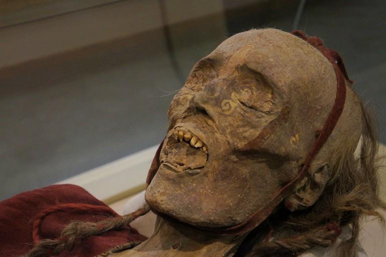 Mummified Beauties