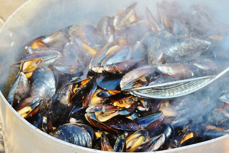 mussels-638201_1280