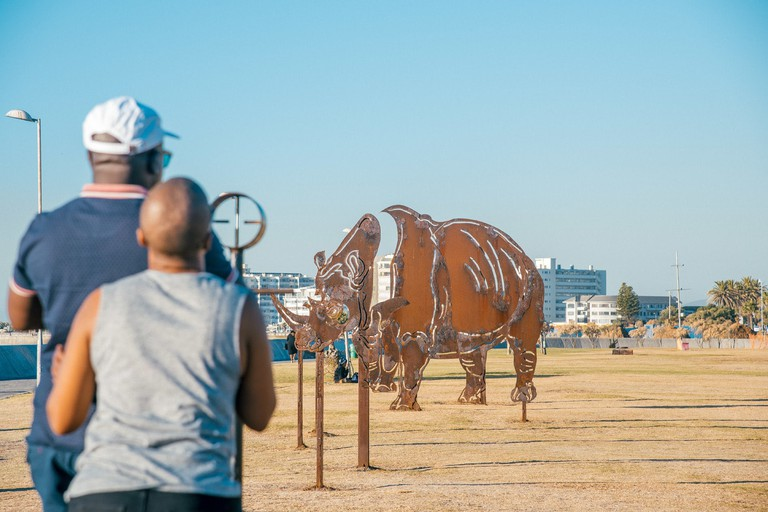 Rhino Artwork on the Sea Point Promenade