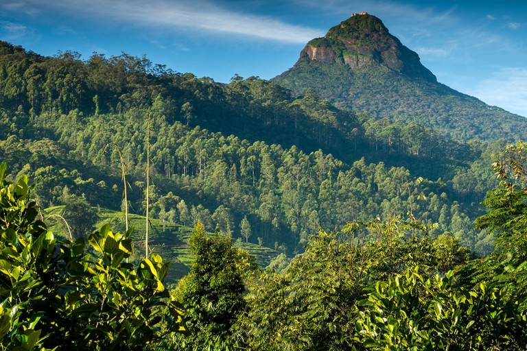 Great Adam's Peak in Sri Lanka early in the morning