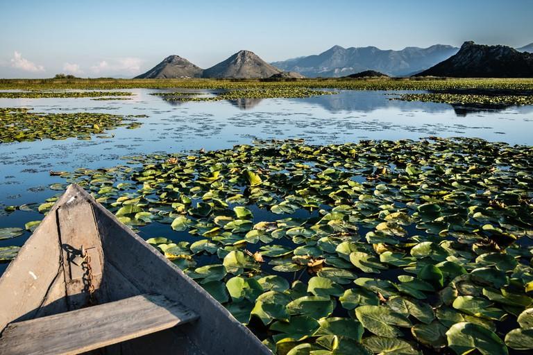Wooden boat in the water lilies on Skadar lake