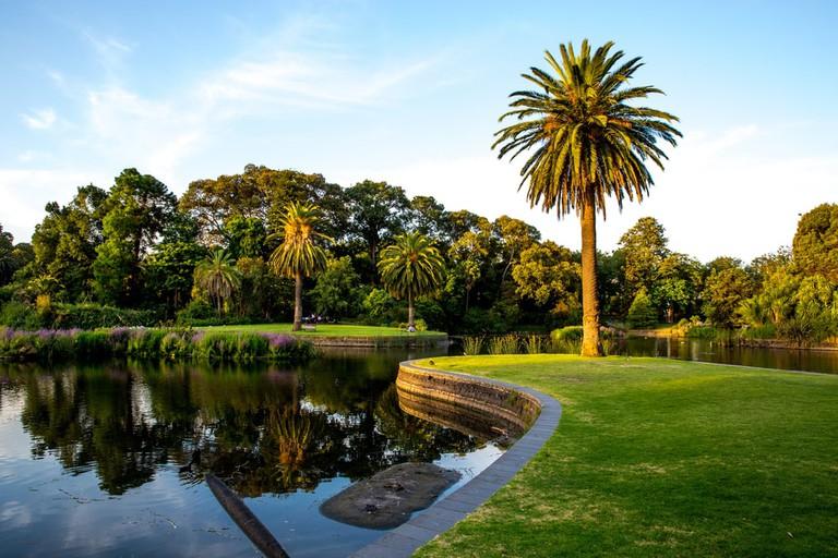 Inside Melbourne's Royal Botanic Gardens | © Suthikait/Shutterstock