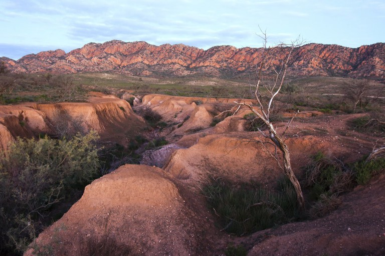 Wilpena Pound © Lawrence Murray / Flickr