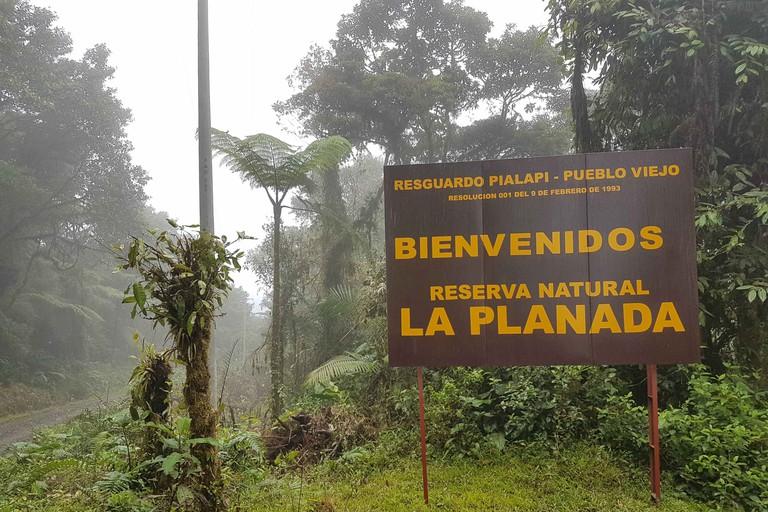 La Planada Natural Reserve