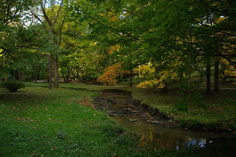 Indiana University | StevenW. / Flickr