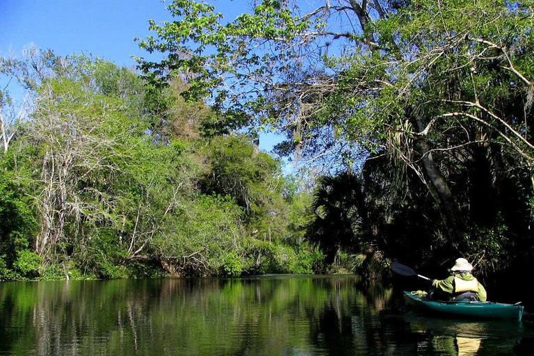 Paddling the Hillsborough River, Tampa