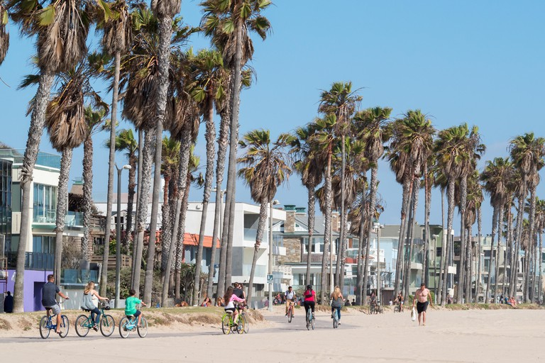 Cycling along Venice beach