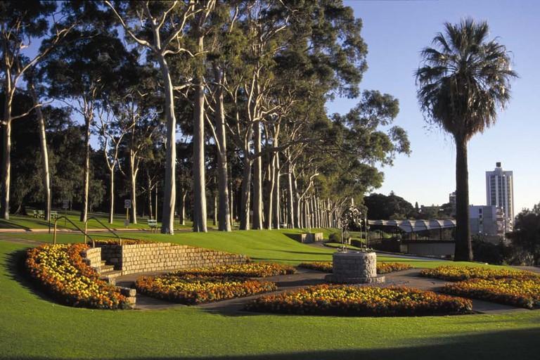 Kings Park   © Bgpawikedit / WikiCommons