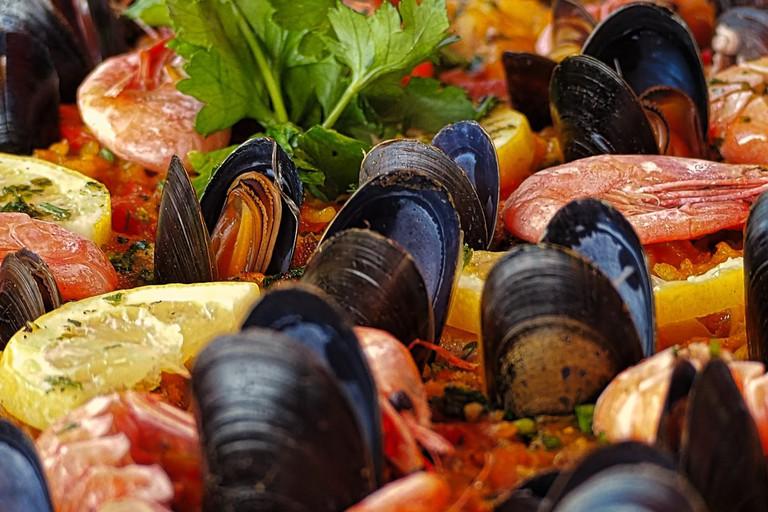 shellfish-3267036_1280