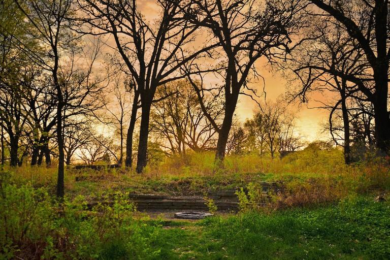 University of Wisconsin – Madison Arboretum   © Richard Hurd/flickr