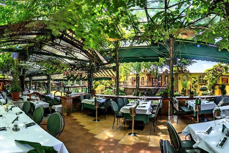 The delightful garden at Franš in Belgrade