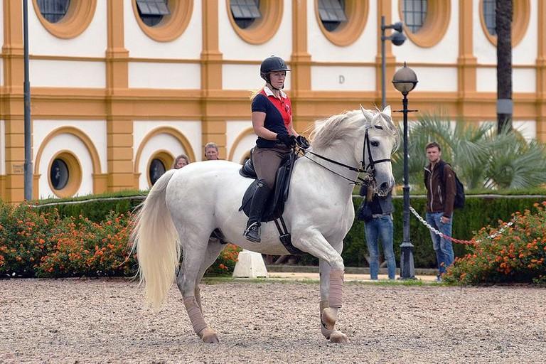 Jerez_2015_10_19_1915_(24441483520)