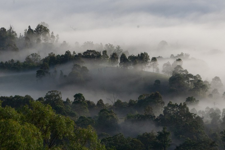 Mist over the hills in the Hunter Valley © Matt Straumann / Flickr