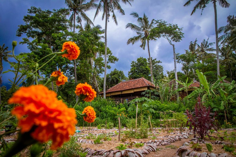 The view from Moksa permaculture garden in Ubud, Bali.