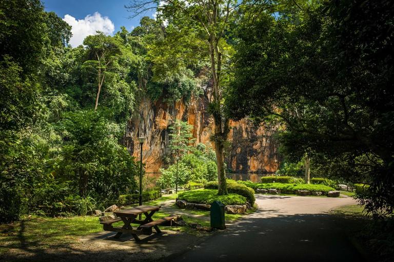 Butik Batok Reservoir, a public park in the jungles of Singapore