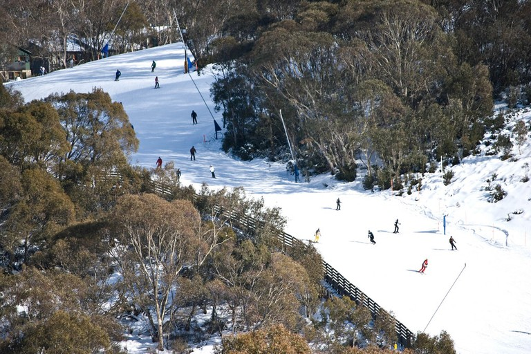 Snowfield in Thredbo © Kimble Young / Flickr