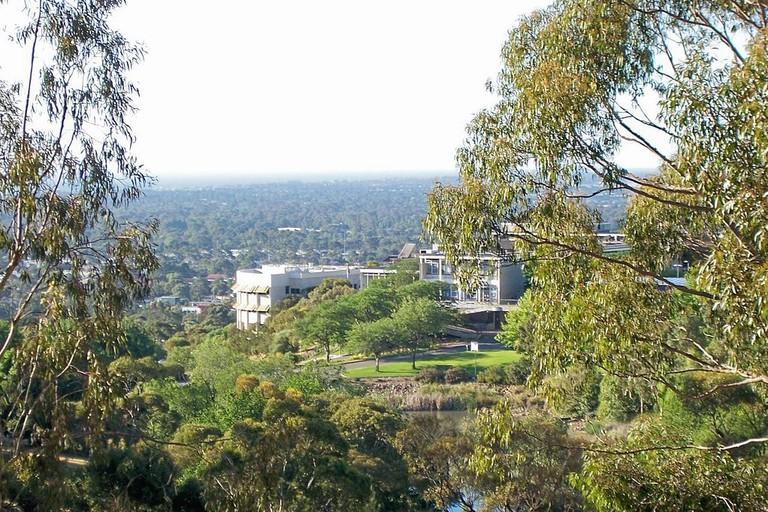 The grounds of Flinders University © Cyberjunkie / Wikimedia Commons